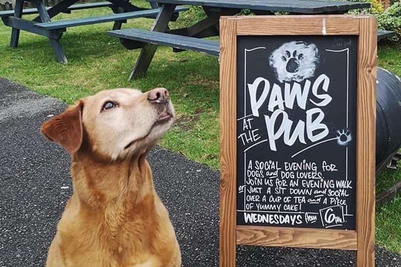 2019 Dog Friendly Best Pub / Bar Winner