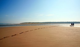 Holkham nature reserve beach